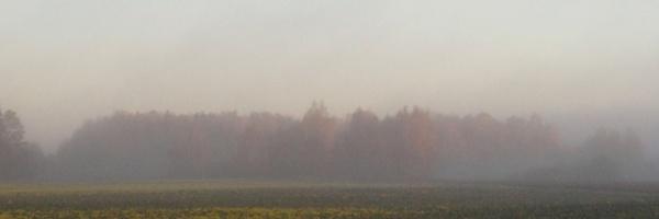 Homeland in the haze c by SauliusR