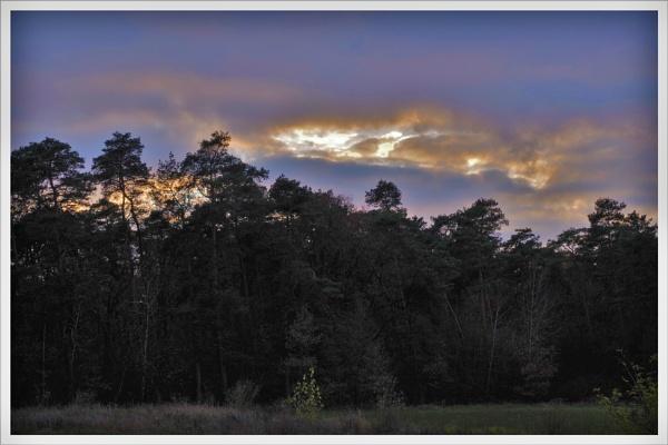 Autumnal Gleam Series #15 by PentaxBro