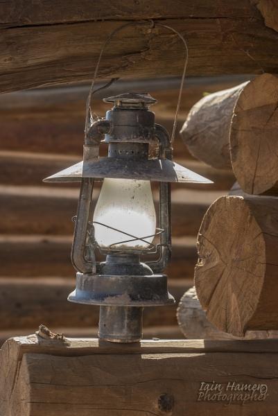 Sunlit Lamp by IainHamer