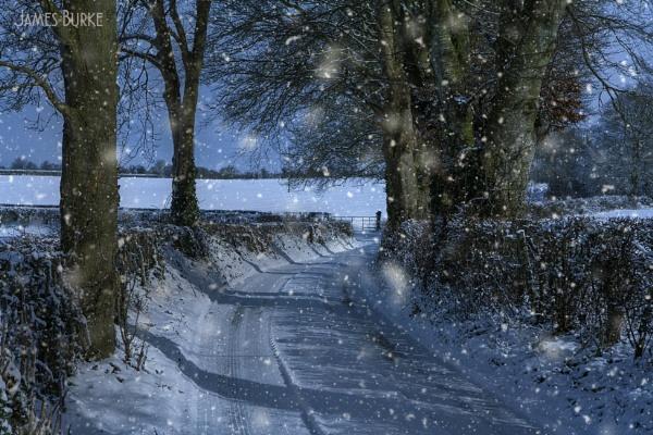 Moonlit lane by jameswburke