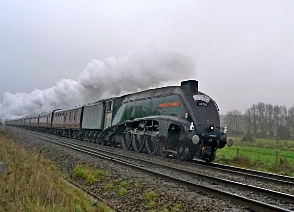 steam by mickr