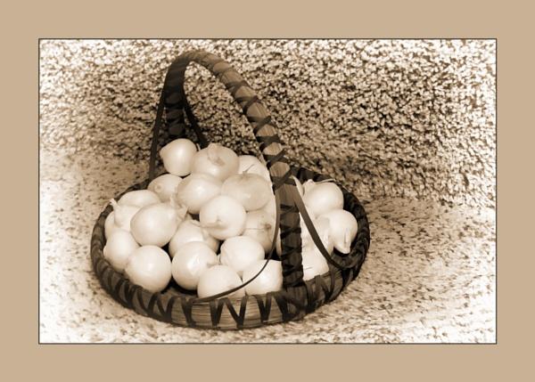 Onions in a Basket by Joline