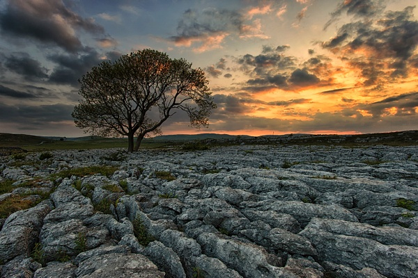 Malham Paving by Buffalo_Tom