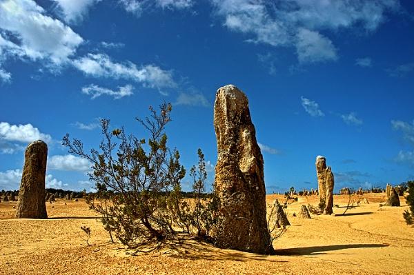 The Pinnacles Western Australia by Zydeco_Joe