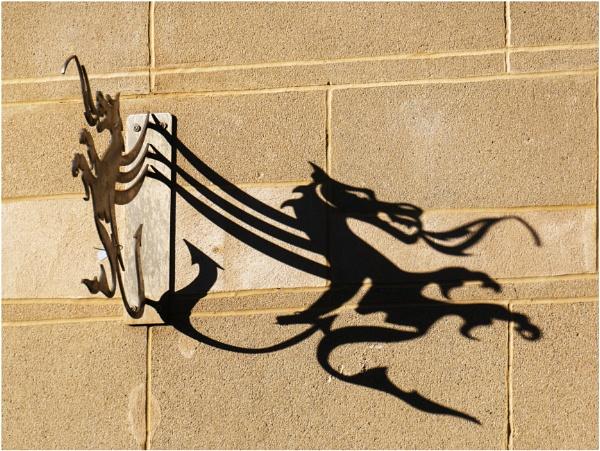 A Welsh dragon. by franken