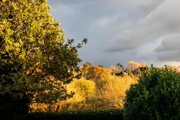 Autumn rainstorm 1 by rambler