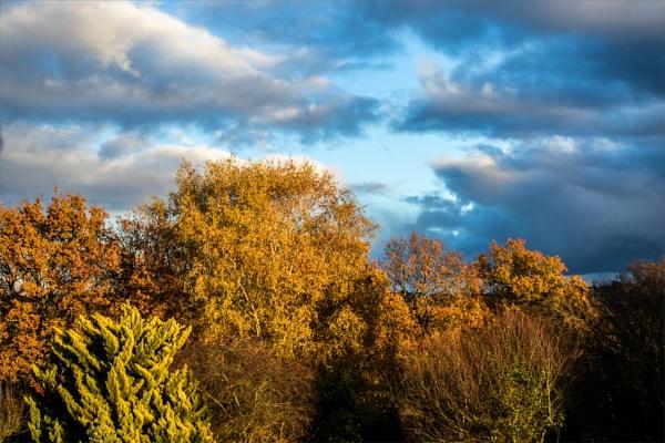 Autumn rainstorm 3 by rambler