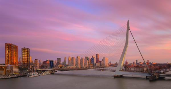 Erasmus Bridge Rotterdam by Outlander