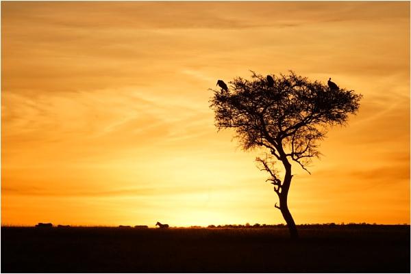 Olare Motorogi Sunrise by notsuigeneris