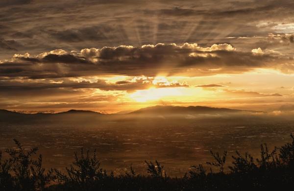 Montale Sunset