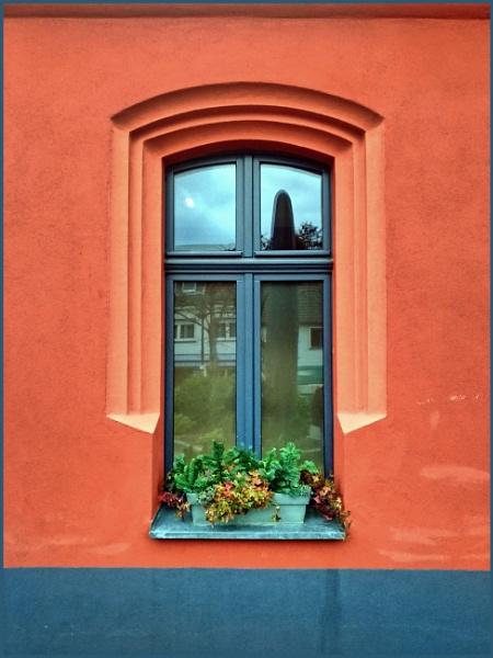 Blue Window by kw