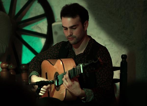 Flamenco Guitarist by sandwedge