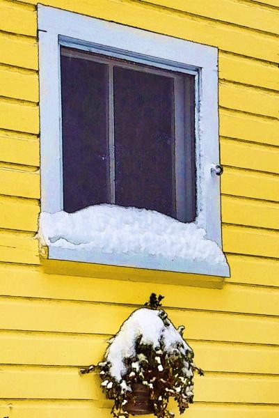 Winter Window by Joline