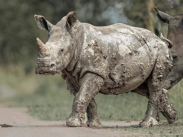 Mud glorious mud by Jamie_MacArthur