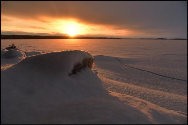 Winter sun by djh698