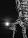Dungeness Moonlight by carper123