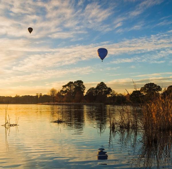 Winter Flight, Canberra, Australia by BobinAus