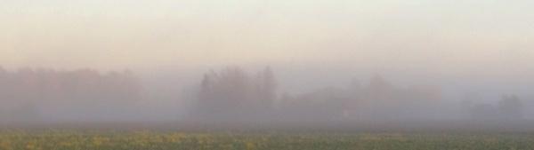 Homeland in the haze e by SauliusR