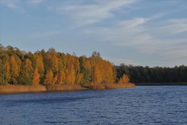 Autumnal Gleam Series #58 by PentaxBro