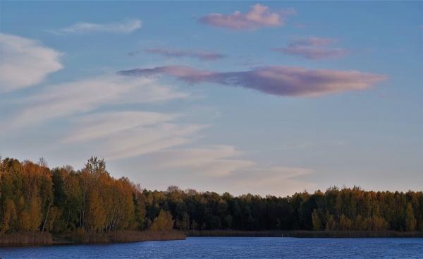 Autumnal Gleam Series #74 by PentaxBro