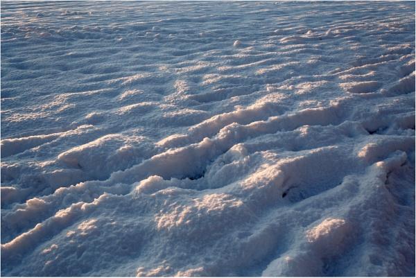 Snow by dark_lord