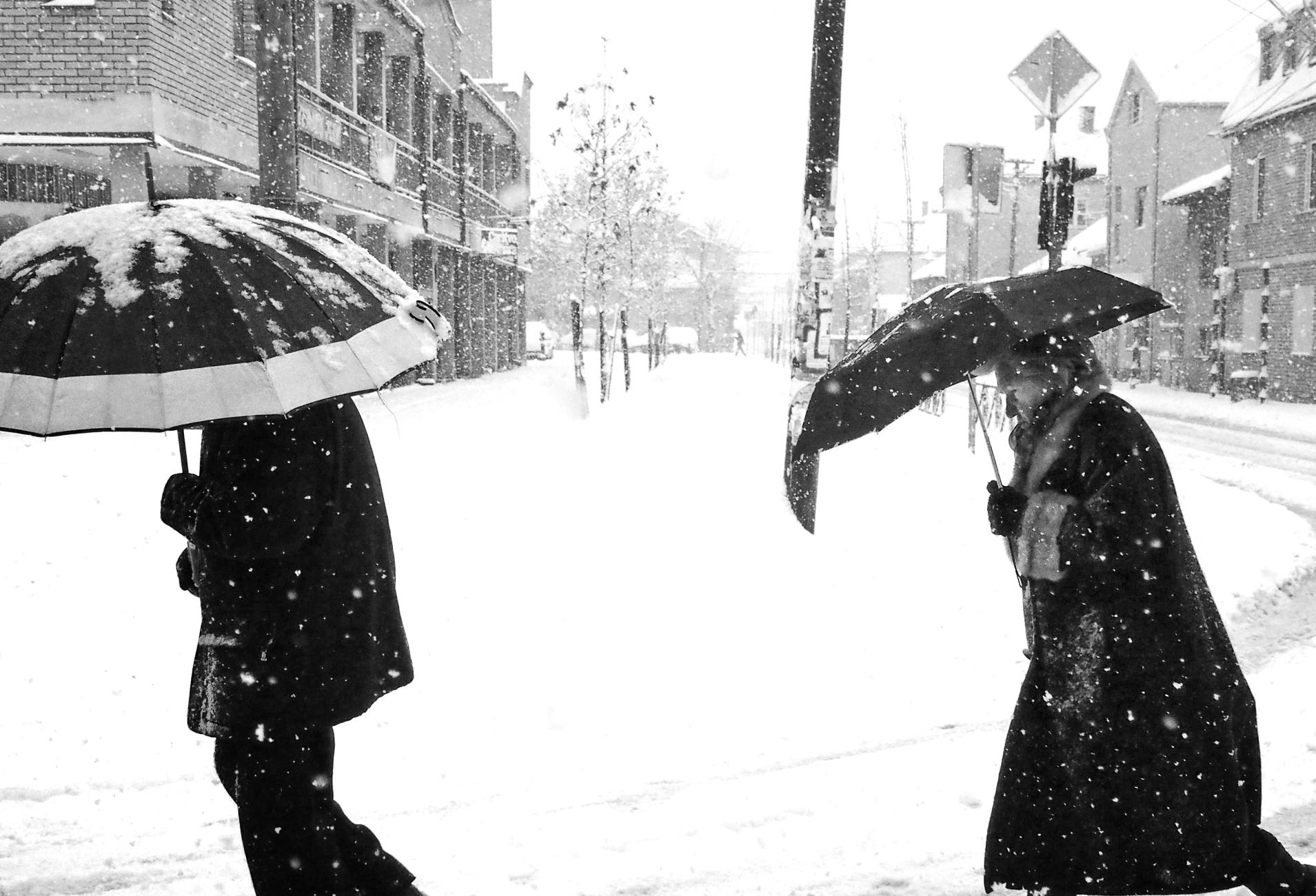 Into the Winter III