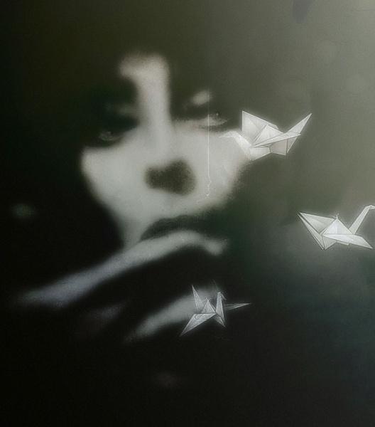 the cranes are flying (Letyat zhuravli) by lostrita