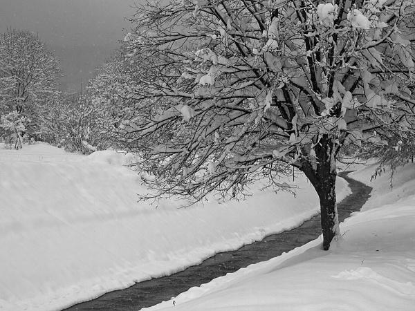 Before winter by LaoCe
