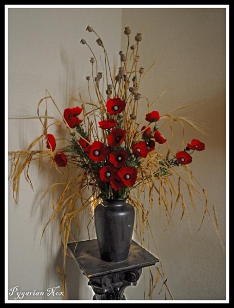 Remembrance by Pygar