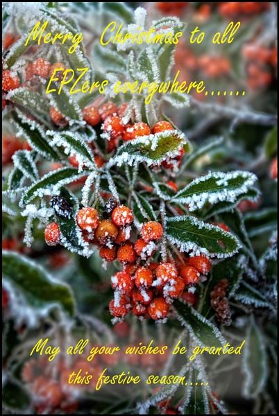 Merry Christmas all...... by Niknut