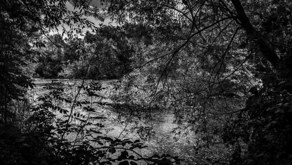 Still Waters by RLF
