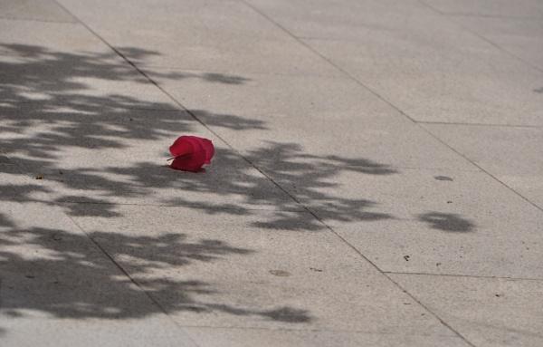 Shadows that I find... Florinarama (5) by Chinga