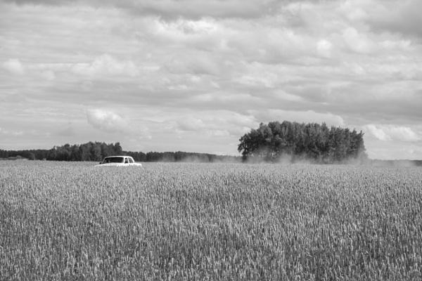 Car driving through Siberian field. by egroegk