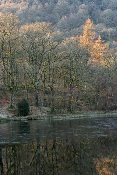 At Yew Tree Tarn by RobertTurley