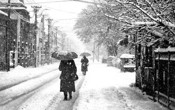 Into the Winter V by MileJanjic