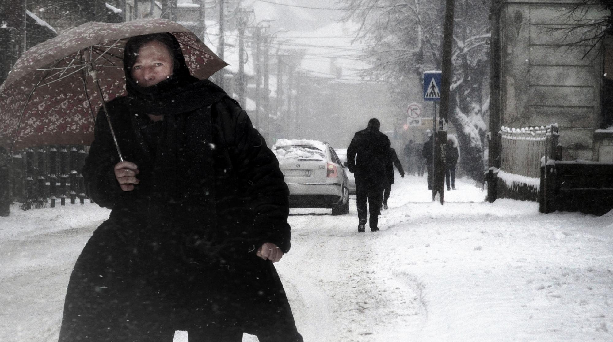 Into the Winter VI