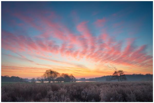 Winter Sun by Satlight