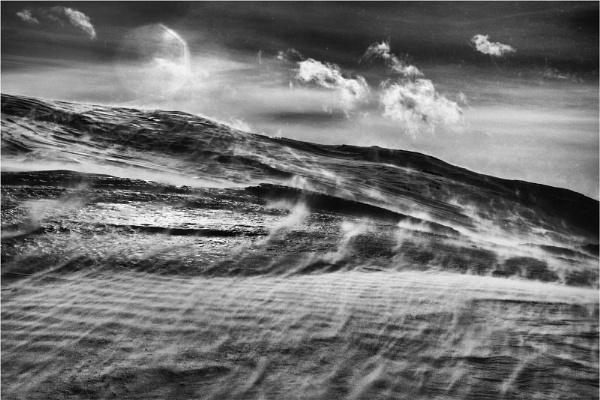 Windswept by fredsphotos