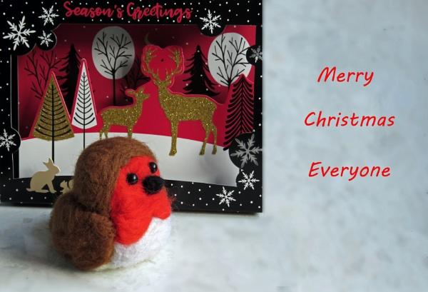 Cheep Christmas Card by KarenFB