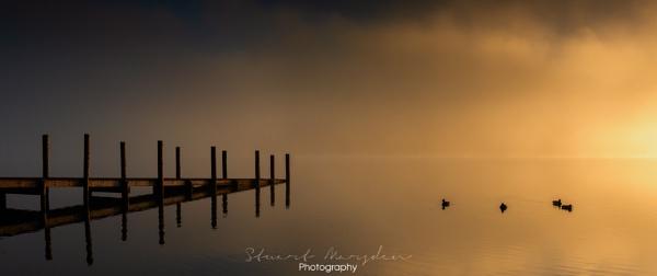 Golden Derwent by Stumars