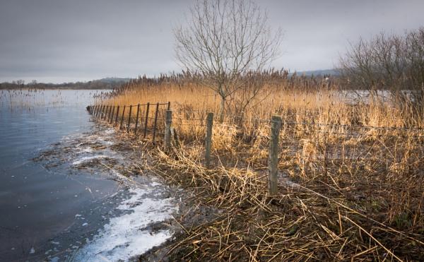 Llangorse lake by brrttpaul