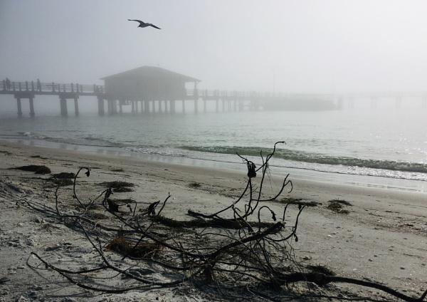 The Fog by Trevhas