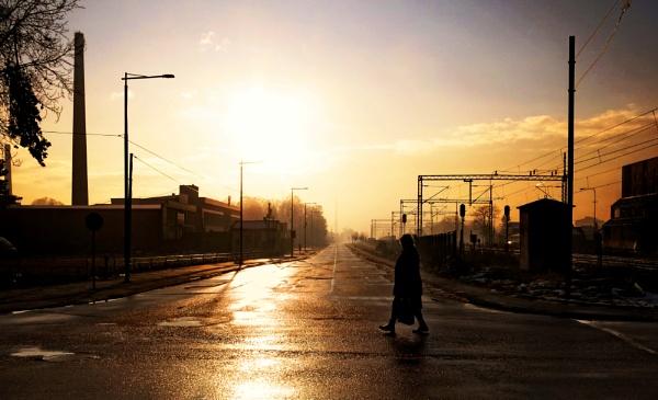 Shadows of Morning VIII by MileJanjic