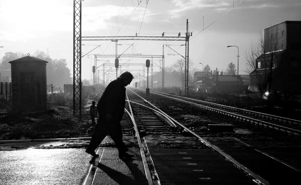 Shadows of Morning X by MileJanjic