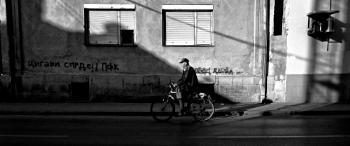 Shadows of Morning XI