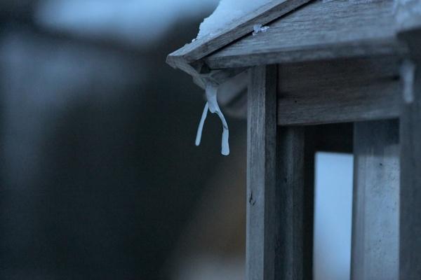 Ice Form by Rogi