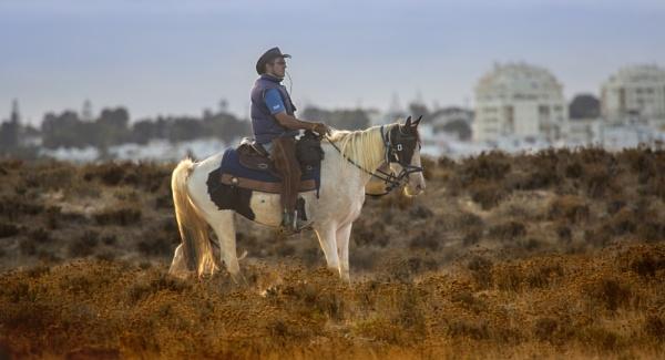 Sundown Rider by sandwedge