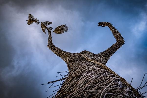 Unbind the Wing by ArtyArt