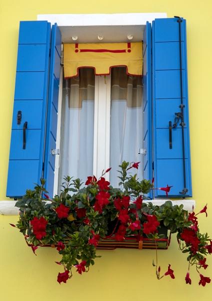 Burano Window by Lillian