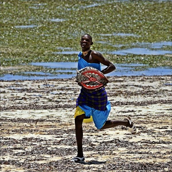 Run run  Robin by papajedi